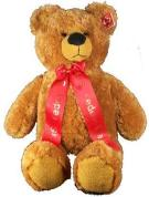 brown teddy bear with ribbon